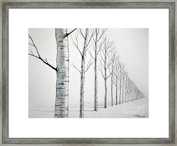 Row Of Birch Trees In The Snow Framed Print