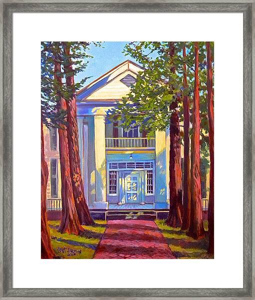 Rowan Oak Framed Print