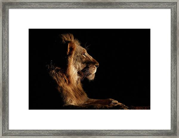 Royal Meeting In The Night Framed Print