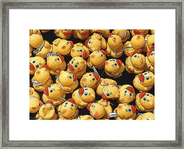 Rubber Duckies Annual Race For Charity Framed Print by Rob Huntley