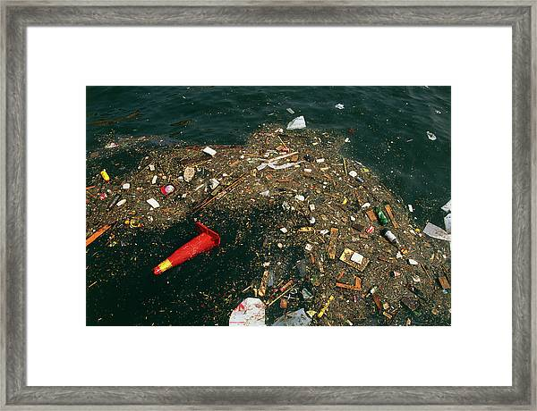 Rubbish Floating On A River Framed Print by Tony Craddock/science Photo Library