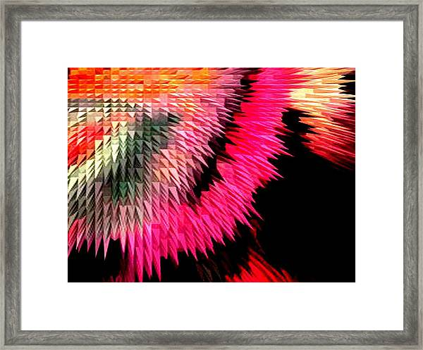 Rug Framed Print
