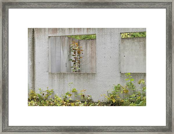 Ruins Of A Building, Prefabricated Concrete Unit Of A House, Recaptured By Nature, Mecklenburg-western Pomerania, Germany Framed Print by Frederik
