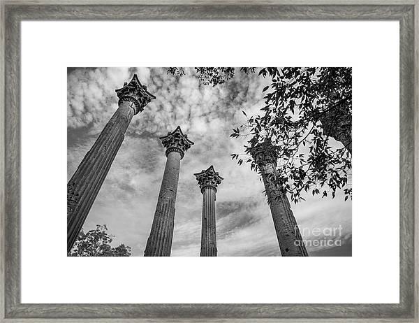 Ruins Of Windsor In Southwest Mississippi Framed Print