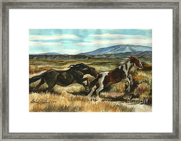 Run Little Horse Framed Print