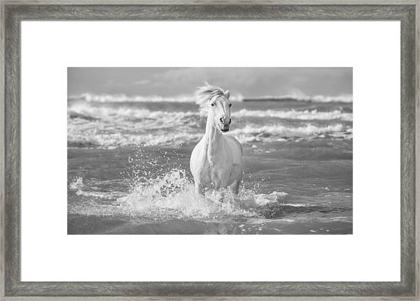 Run White Horses I Framed Print by Tim Booth