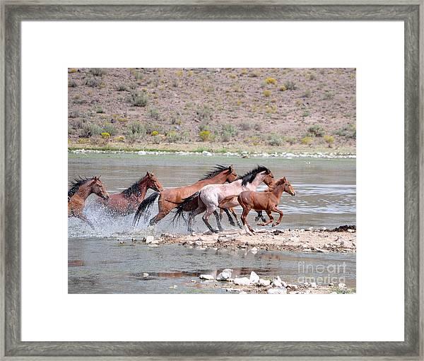 Running And Splashing Framed Print