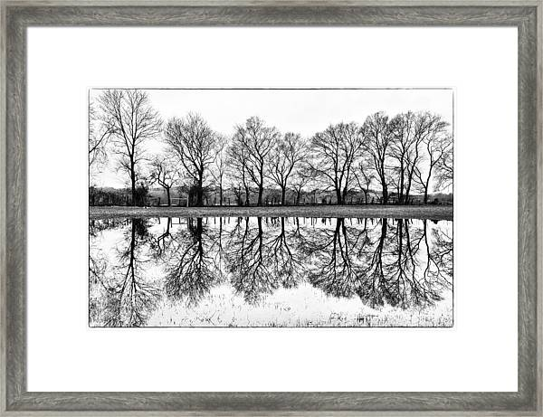 Rural Reflections Framed Print by Ron Plasencia