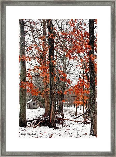 Rustic Winter Framed Print
