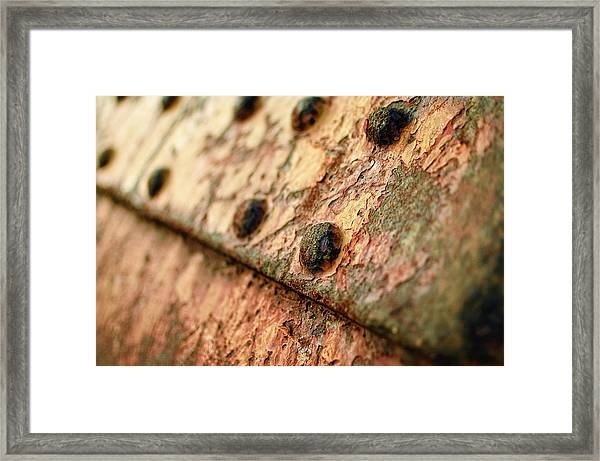 Framed Print featuring the photograph Rusty Bolts by Steve Stanger