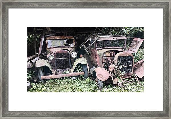 Rusty Old Friends Framed Print