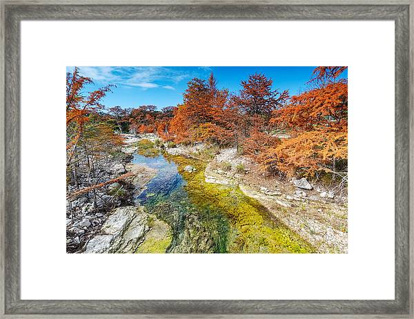 Sabinal River Magic Utopia Texas Hill Country Framed Print