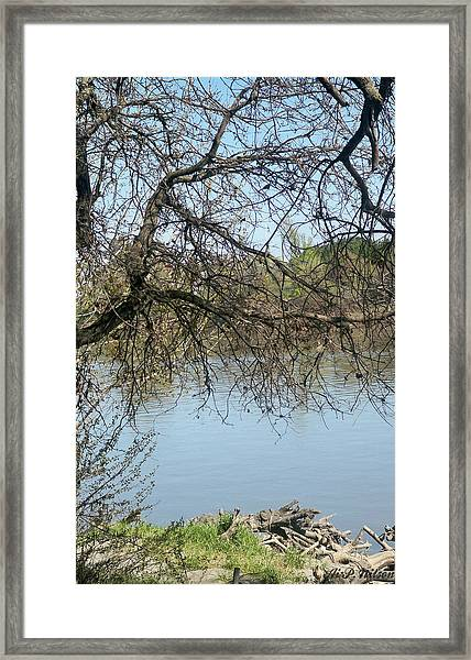 Fall At Sacramento River Scenic Photography Framed Print
