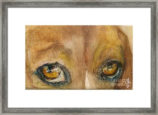 Sad Eyes Framed Print by Donna Chaasadah