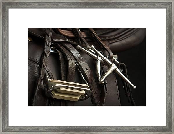 Saddle 2 Framed Print