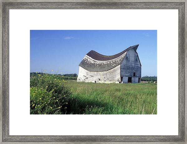Sagging Roof On Abandoned Barn Sequim Framed Print