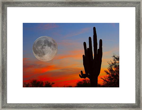 Saguaro Full Moon Sunset Framed Print