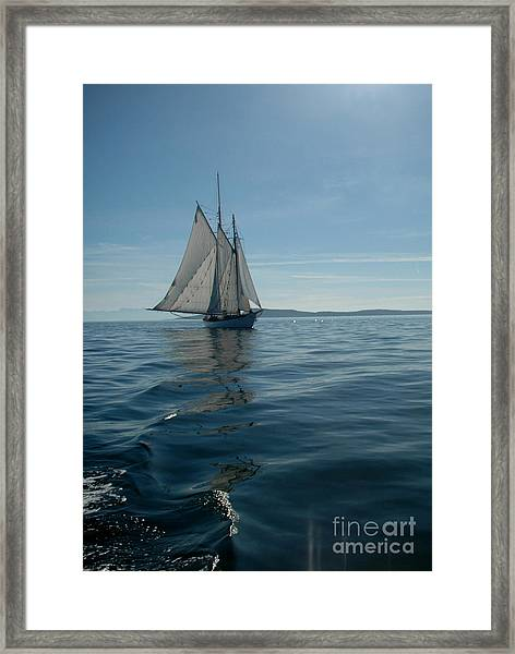 Sail The Blue Framed Print