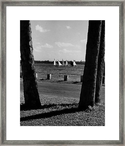 Sailboats At Jupiter Island Framed Print