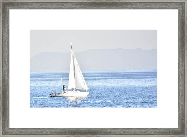 Sailing Peace Framed Print