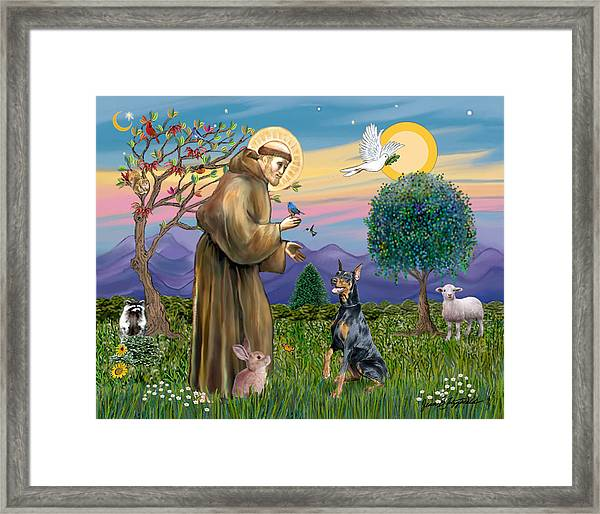 Saint Francis And Doberman Pinscher Framed Print