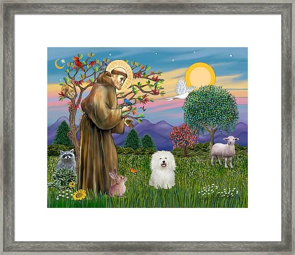 Saint Francis Blesses A Bolognese Framed Print