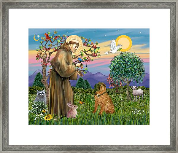 Saint Francis Blesses A Chinese Shar Pei Framed Print