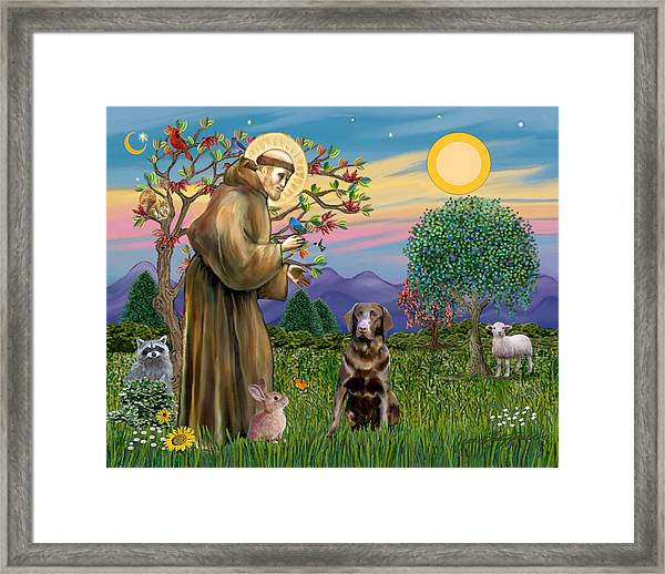 Saint Francis Blesses A Chocolate Labrador Retriever Framed Print