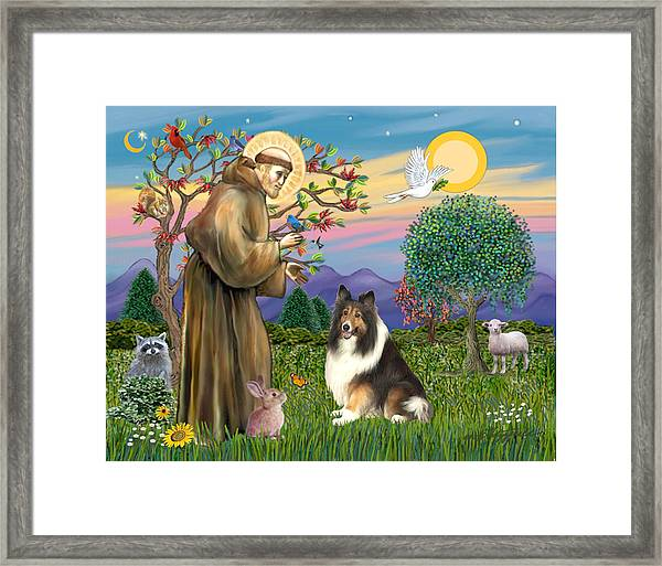 Saint Francis Blesses A Sable And White Collie Framed Print