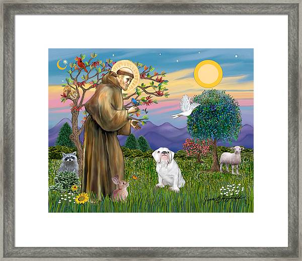 Saint Francis Blesses An English Bulldog Framed Print