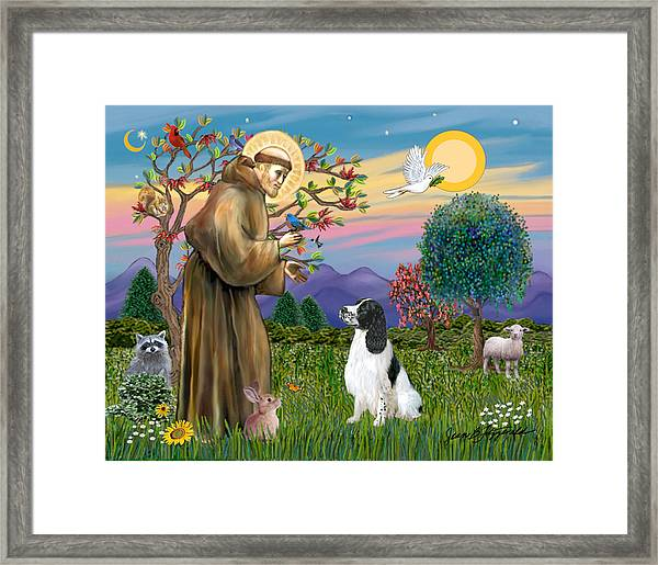 Saint Francis Blesses An English Springer Spaniel Framed Print