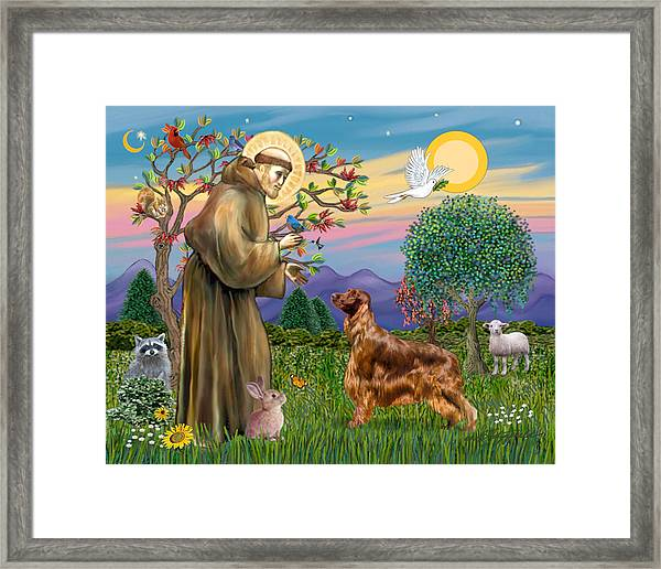 Saint Francis Blesses An Irish Setter Framed Print