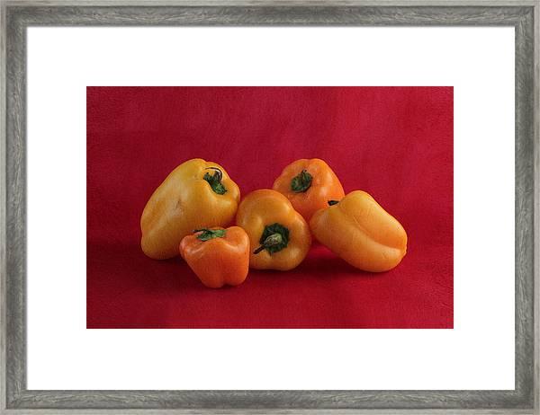 Salsa Framed Print
