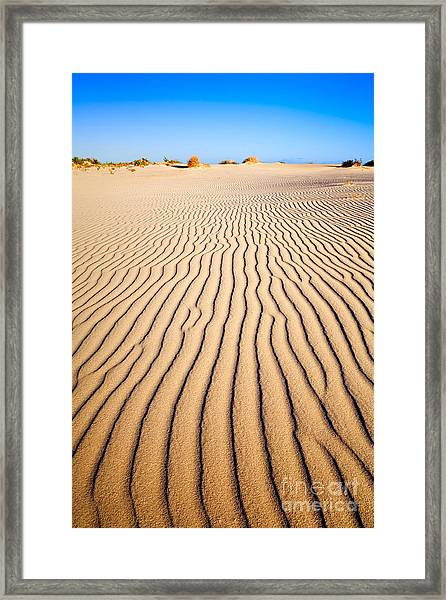 Sand Dunes At Eucla Framed Print