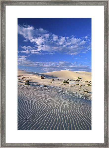 Sand Dunes Carved By Wind Framed Print