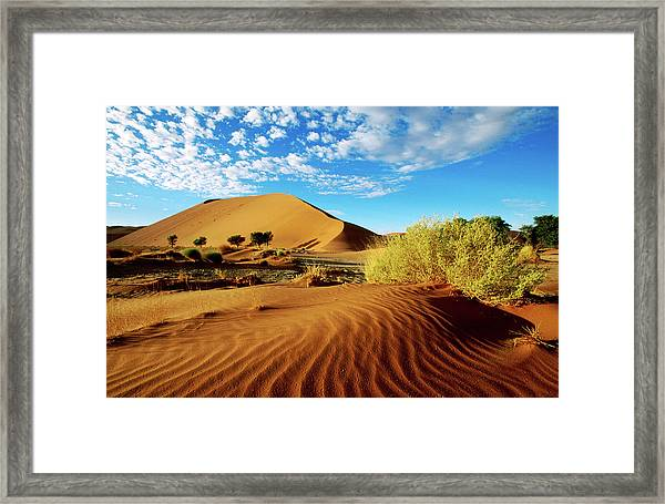 Sand Dunes In Namib Desert Park Framed Print