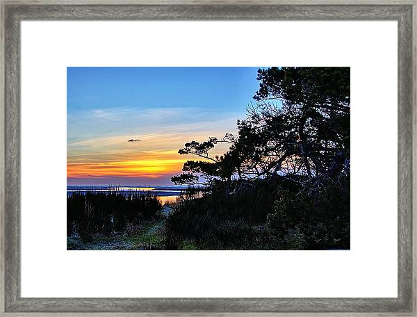Sand Lake Sunset Framed Print