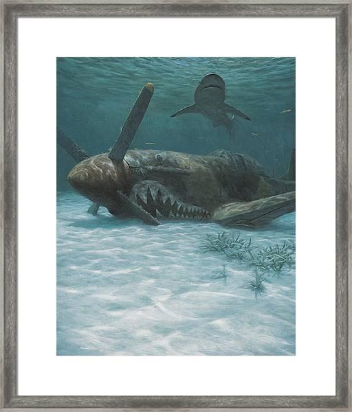 Sand Shark Framed Print