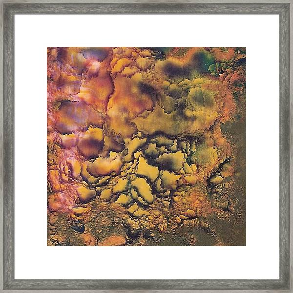 Sandy's  Artwork Framed Print