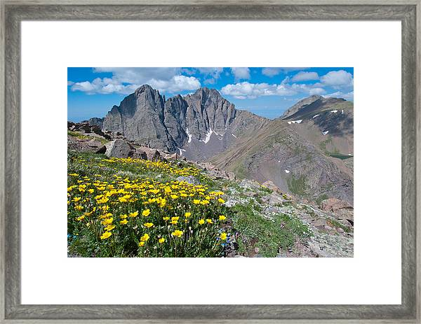 Sangre De Cristos Crestone Peak And Wildflowers Framed Print