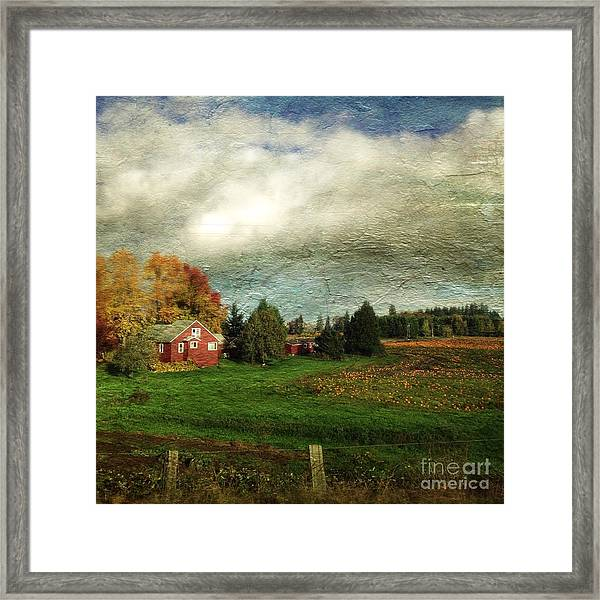 Sauvie Island Farm Framed Print