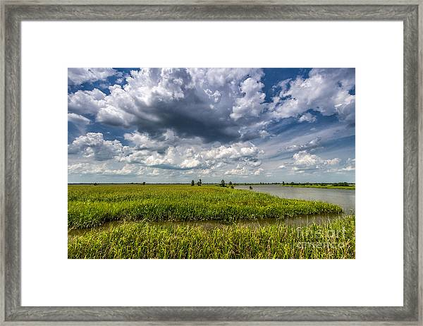 Savannah Wildlife Refuge  Framed Print