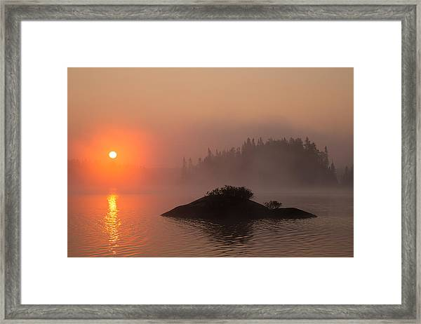 Sawbill Surprise Framed Print