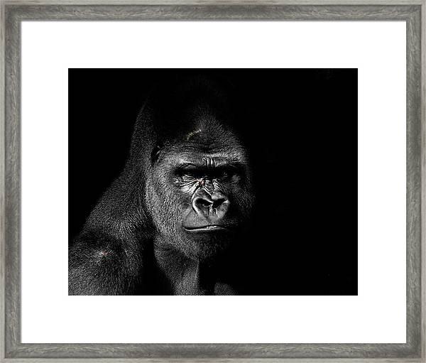 Scarface Framed Print