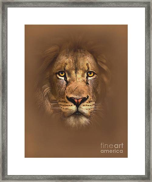 Scarface Lion Framed Print