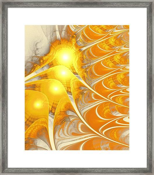 Scattered Sun Framed Print