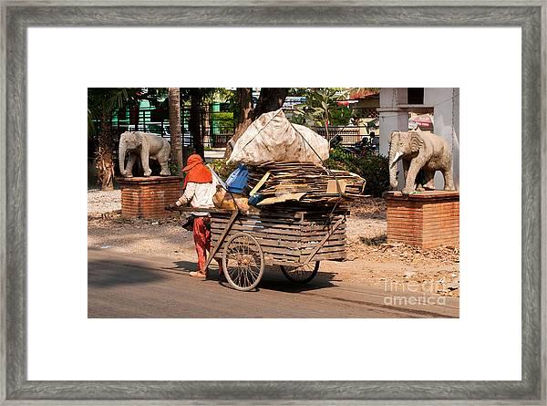 Scavenger Framed Print