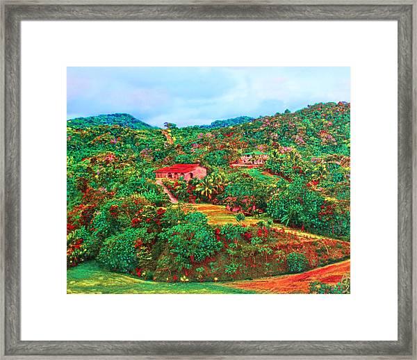 Scene From Mahogony Bay Honduras Framed Print