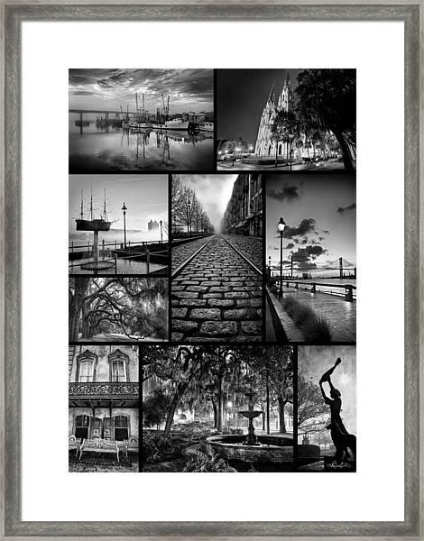 Scenes From Savannah Framed Print