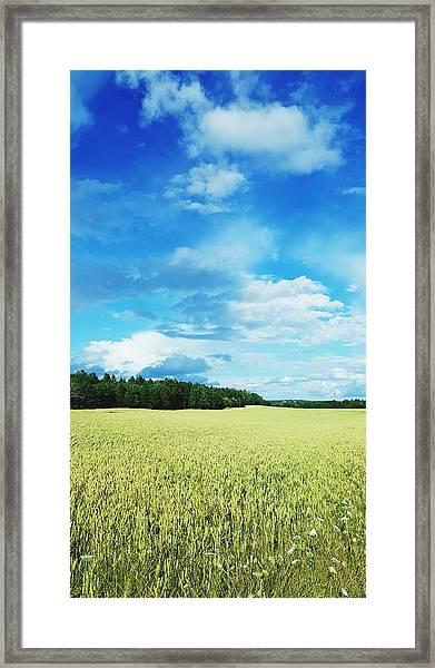 Scenic View Of Field Against Cloudy Sky Framed Print by Jonas Rask / EyeEm